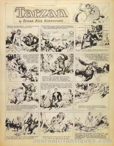 Rare Hal Foster Tarzan Original Strip Art Discovered