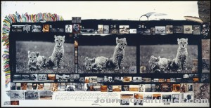 Peter Beard triptych, $662,500, Christie's