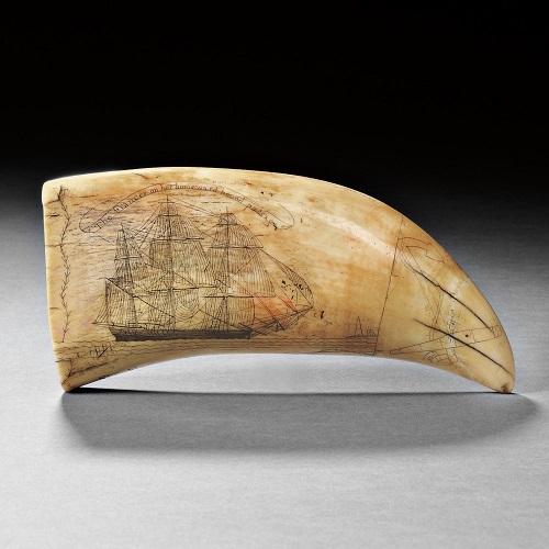 Gavels 'n' Paddles: Scrimshaw whale's tooth, $123,000, Skinner, Inc.