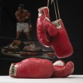 Gavels 'N Paddles: Ali-Liston boxing gloves, $956,000, Heritage Auctions