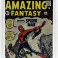 Gavels 'n' Paddles: Amazing Fantasy #15, $13,750, Bruneau & Co.