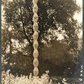 Gavels 'n' Paddles: Edward Steichen photo, $20,000, Doyle