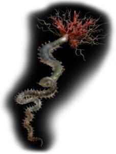 A glass model of a tube worm (Riftia pachyptila). photo: The Guardian