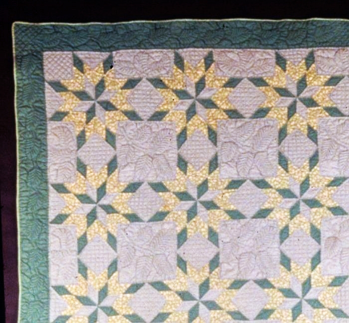 A color photo of the winning quilt, detail