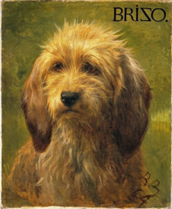 Three dogs from a series of sheepherders' dogs painted by Rosa Bonheur in 1879(l-r) Brizo, Martin, and Tayo