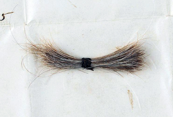 A thin lock of Abraham Lincoln's hair, taken during his postmortem examination, sold for $81,250 in an online auction that ran from August 21-Sept. 12 by RR Auction, based in Boston, MA.