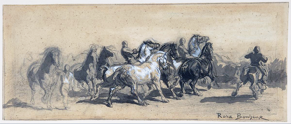 Rosa Bonheur (1822-1899) Sheet of Studies for The Horse Fair, 1840s. Black chalk and graphite. Metropolitan Museum of Art