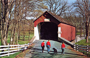A glossy photo postcard showing Knecht's Covered Bridge Bucks County PA currently selling on eBay for $4.45, just one of the many online options showing the variety and values of this fun collectible