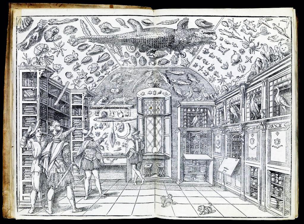 "Woodcut of the Wunderkammer room, from Ferrante Imperato, ""Dell'historia naturale …"" Libri XXVIII (Naples, 1599) photo: Wellcome Collection"
